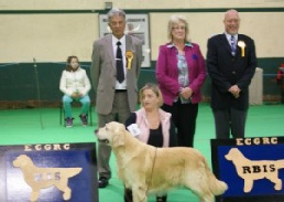 2012 Show Results